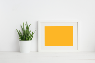 'frame','photo','table','picture','white','wall','plant','blank','shelf','wooden','decor','book','home','room','background','office','art','mock','scandinavian','poster','pot','minimal','living','interior','square','empty','design','contemporary','modern','arrangement','bright','classic','concept','copy','day','decorative','floor','gallery','houseplant','identity','lifestyle','loft','multifunctional','new','old','paper','space','style','stylish','template'